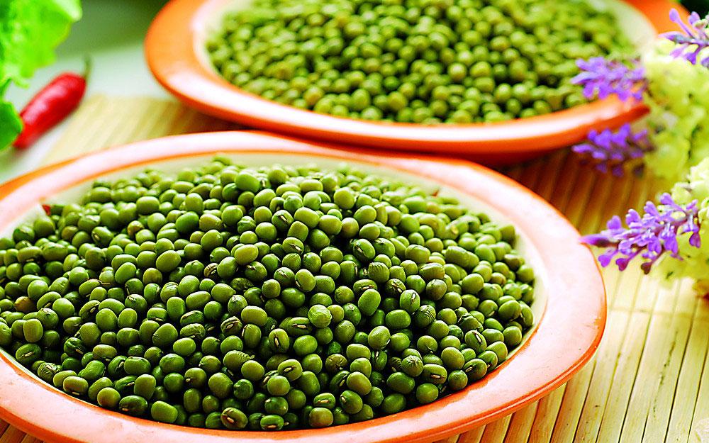 green mung -2